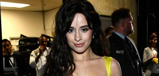 Camila Cabello is Giving Fans the Chance to Be In Her Next Music Video!