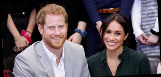 """Prince Harry Reportedly Sold His Hunting Rifles for £50,000 to """"Please"""" Meghan Markle"""
