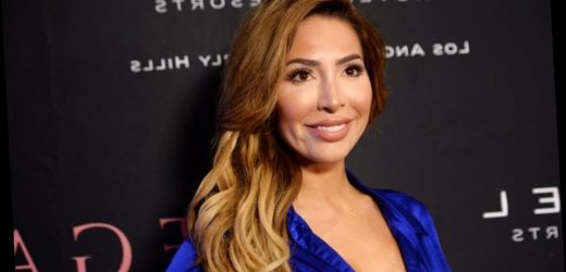 Fans Call for Farrah Abraham's Latest Instagram Video to Be Deleted
