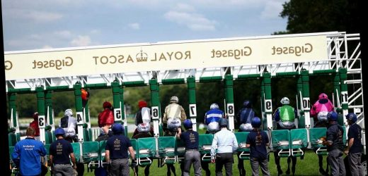 2.25 Royal Ascot racecard and tips: Who should I bet on in the Ribblesdale Stakes?