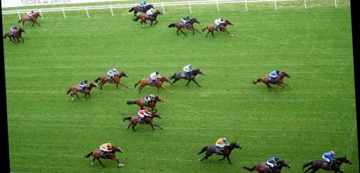 3.35 Royal Ascot racecard and tips: Who should I bet on in the Diamond Jubilee Stakes?