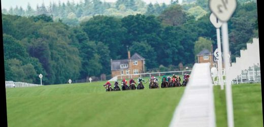 Royal Ascot racing tips: Sun Racing's Tote Placepot selections for Thursday at the Royal meeting