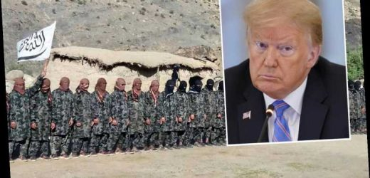 Trump was NOT briefed on Russian spies offering cash to Taliban militants to kill US soldiers in Afghanistan, WH says – The Sun
