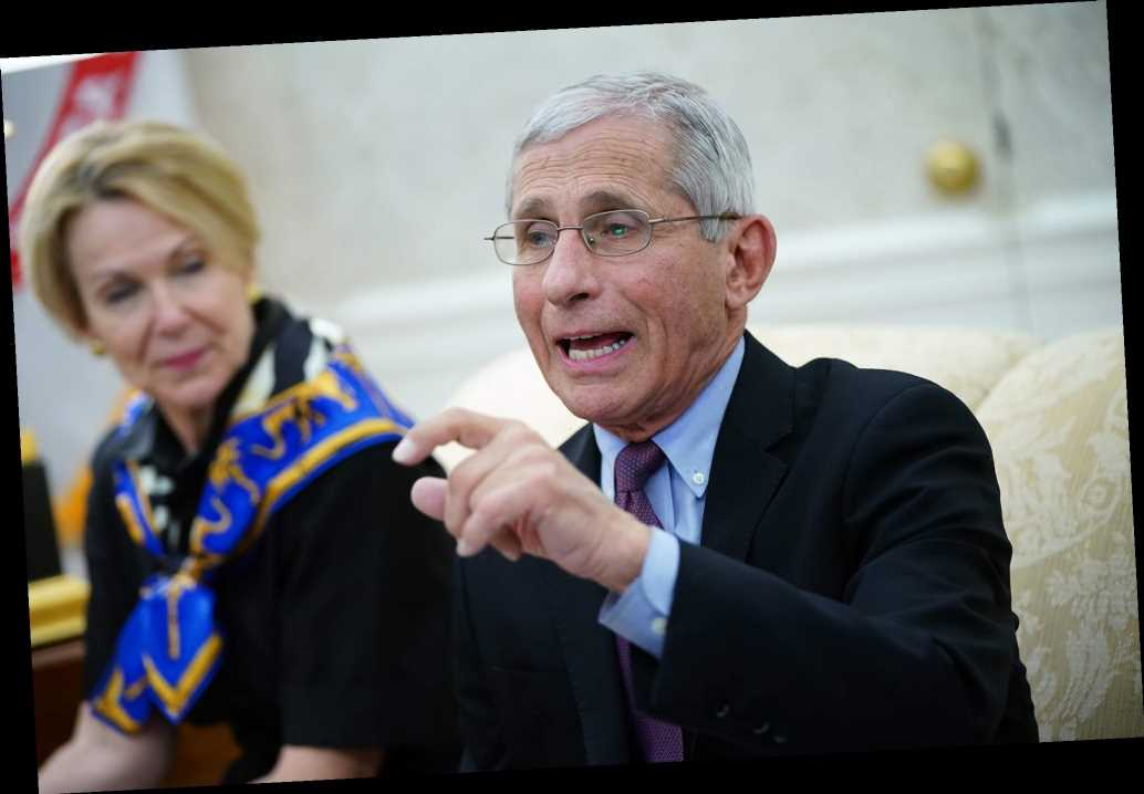 Dr. Anthony Fauci is fan of controversial NBA restart plan