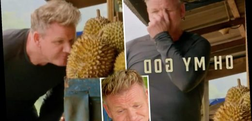 Gordon Ramsay gags as he tastes 'smelliest fruit in the world' in new US cooking show