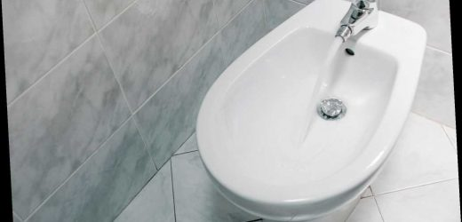 Bidet company will pay someone $10K to study their pooping habits