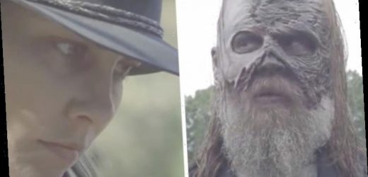 The Walking Dead season 11: When will series air as AMC confirms no new episodes in 2020?