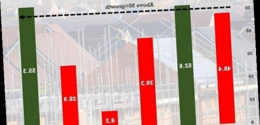 Construction industry starts growing again after lockdowneases
