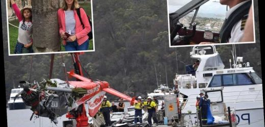 Brit businessman and family may have been killed by seaplane exhaust fumes in horror holiday crash