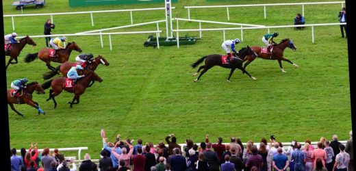 Irish Oaks betting preview: Tips, analysis and runners and riders for the fillies' Classic at the Curragh