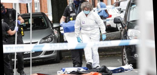 Teen, 19, stabbed to death in street named as 18-year-old held on suspicion of murder