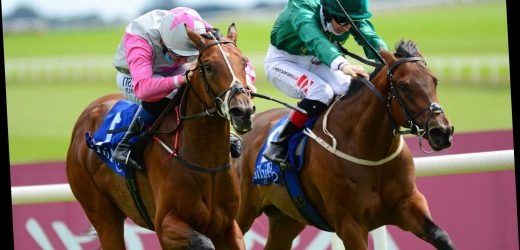 Hunt for a lightweight jockey begins as two-year-old Frenetic set to take on her elders in Nunthorpe