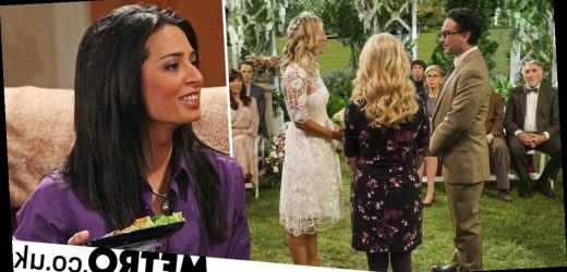 The Big Bang Theory fans realise there was a secret wedding off camera