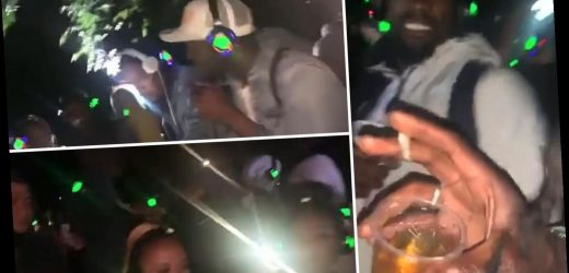 Video shows 'illegal lockdown rave' in North East London despite calls from police for partygoers to stay home