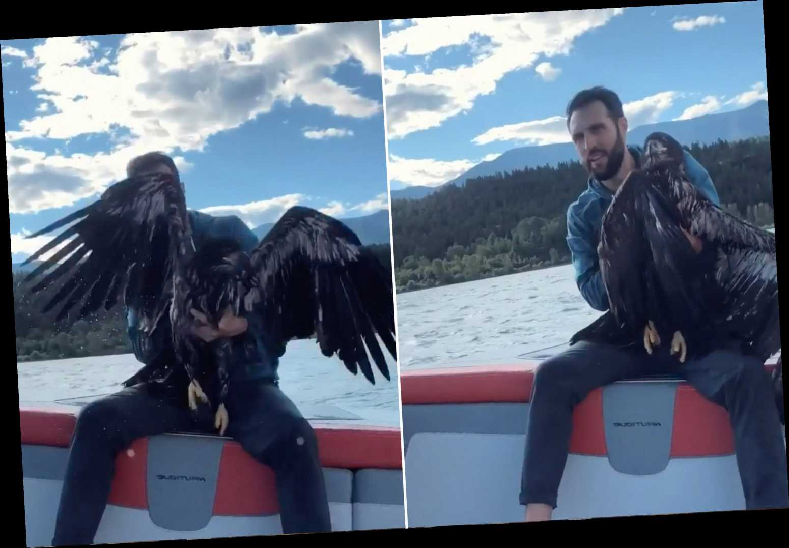 Man rescues drowning baby bald eagle to prove to his son he's 'cool'