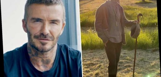 David Beckham shows off his new low-key country style as he goes for sunset walk