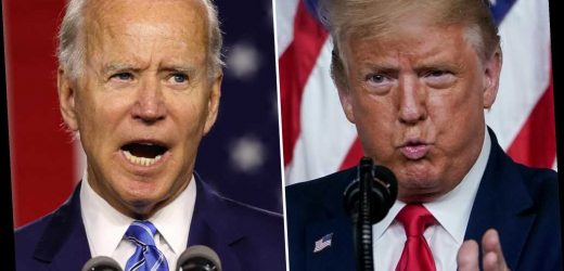 Trump rips Joe Biden for calling Arizona 'an important city'