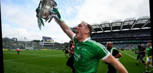 Shane Dowling QUIZ: How well do you know the Limerick star's career?