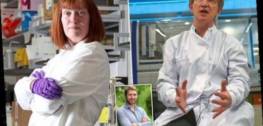 Covid vaccine scientists in row over whether to infect volunteers