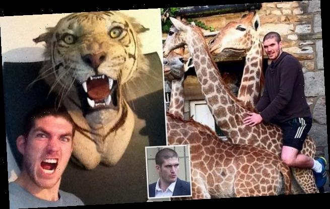 Taxidermist facing jail again for trading endangered species