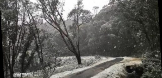 Snow in Melbourne's CBD as Antarctic blast hits Victoria