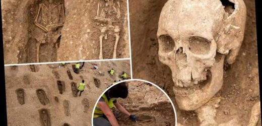 Massive ancient death pit filled with hundreds of corpses uncovered in northern Spain