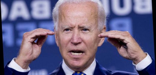 Biden snaps at reporter questioning his cognitive abilities: 'Are you a junkie?'
