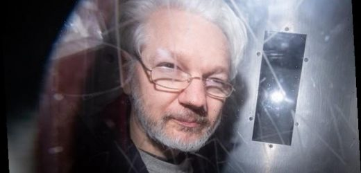 Decision on Assange 'won't be made until after US election'