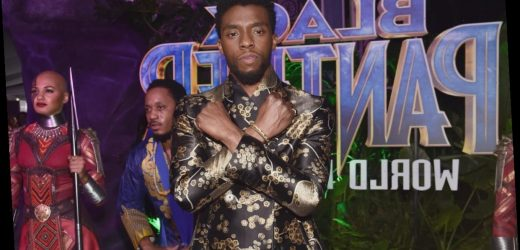 Marvel Will Not Recast T'Challa — How They Plan to Pay Tribute to Chadwick Boseman in 'Black Panther 2'