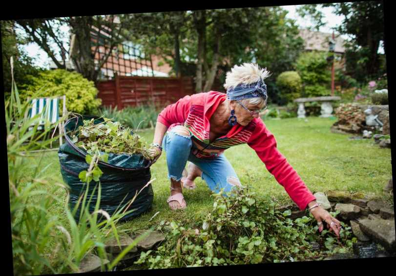 Brits finding their creative streak in lockdown by cooking and gardening