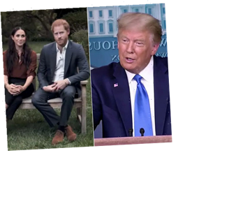 Donald Trump Drags Meghan Markle, Tells Harry: Good Luck with That Broad!