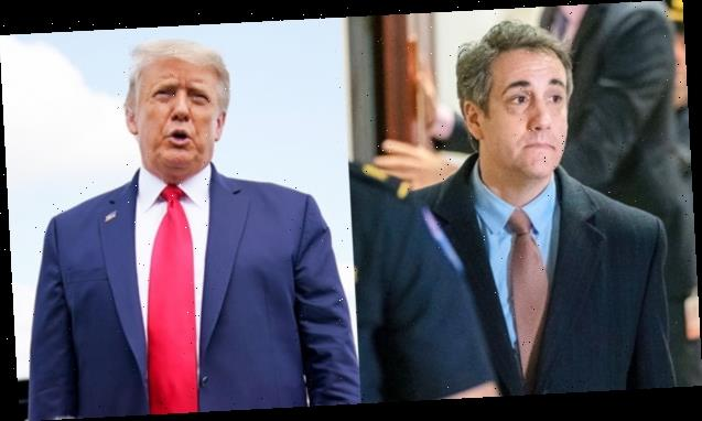 Michael Cohen Claims Trump Said His Supporters Would Think It Was 'Cool That He Slept With A Porn Star'