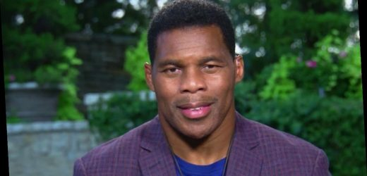 Herschel Walker slams BLM movement, challenges NFL owners and players who support 'trained Marxists'