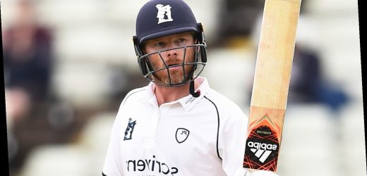 Bob Willis Trophy: Ian Bell hits fifty for Warwickshire in final red-ball game before retirement