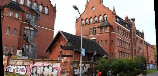 Arsonists throw petrol bombs at Germany's Robert Koch Institute