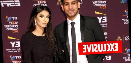 Cops called to Amir Khan's house after bust-up ahead of new reality show