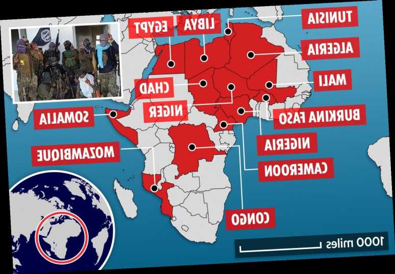 ISIS taking over swathes of Africa like it did in Syria and Iraq with 'staggeringly brutal' tactics, Pentagon warns