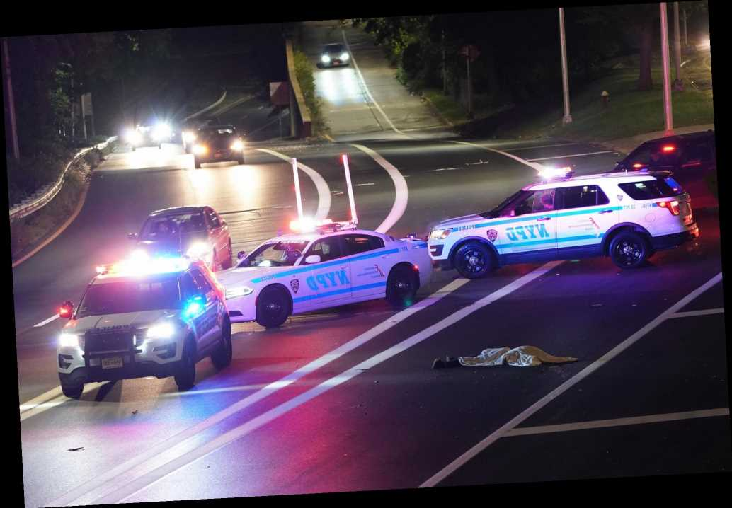 Man lying in middle of Henry Hudson Parkway killed in hit-and-run