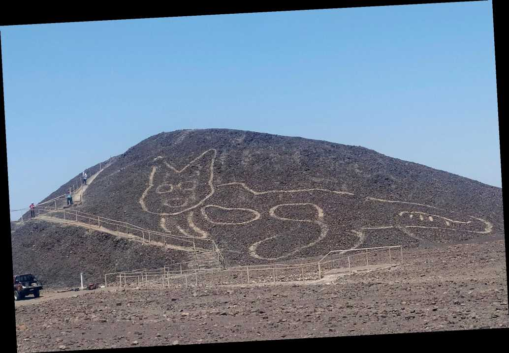 2,000-year-old lounging cat figure discovered among Peru's Nazca Lines