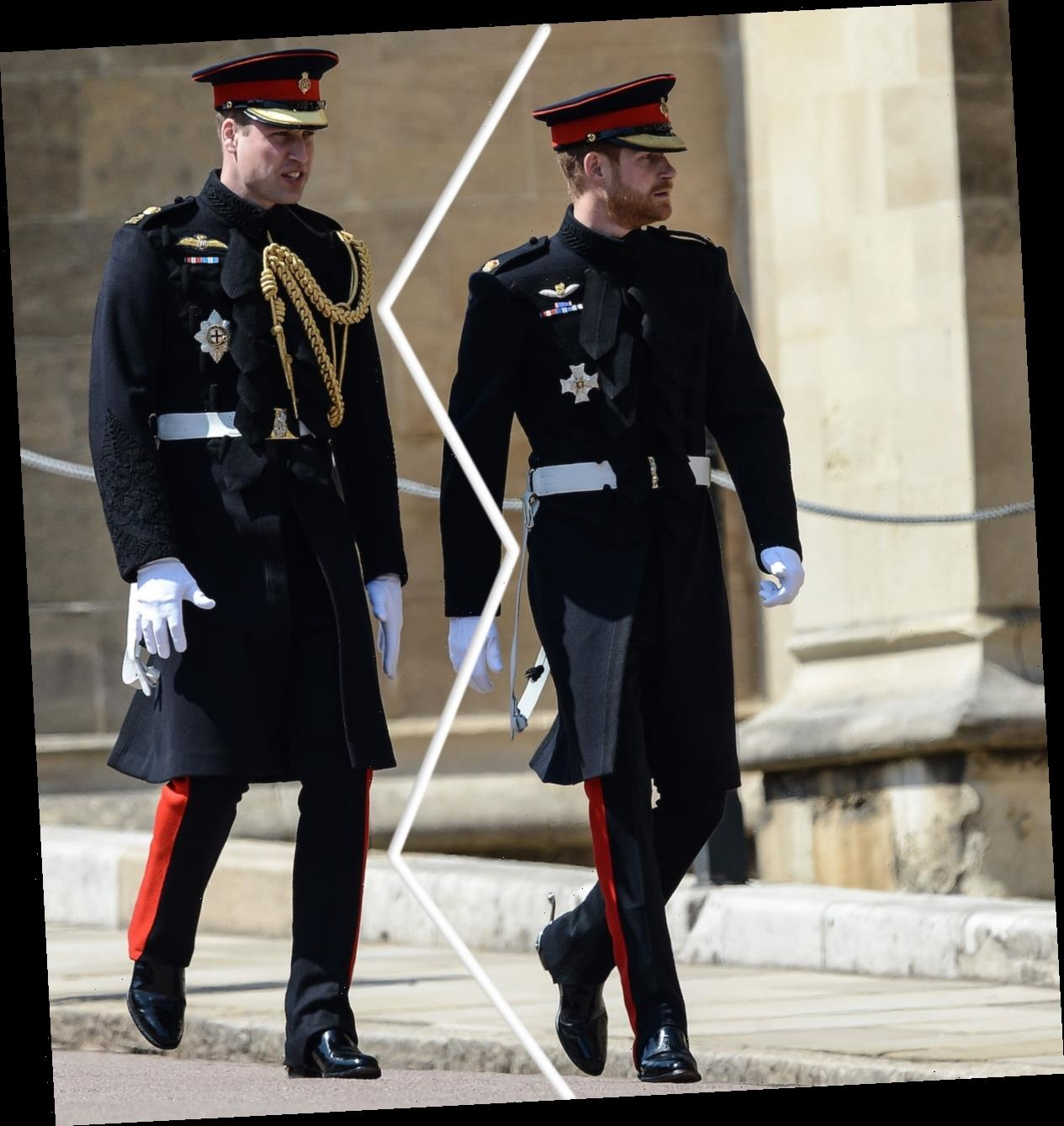 Prince Harry & Prince William's MAJOR Rift Explored In Revealing New Book