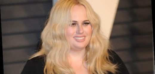Rebel Wilson, 40, Shows Off Her Incredible Weight Loss In Shiny Spandex Pants At Abandoned Zoo