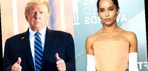 Zoë Kravitz Drags 'Disgusting' Trump During Fiery Clapback At Fan: 'I Don't Like White Supremacists'