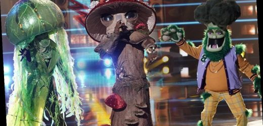 The Masked Singer Unmasks Genuine Living Legend in Shocking Reveal