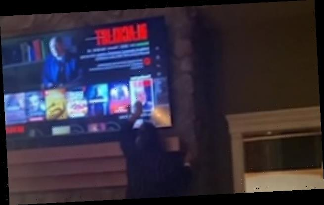 Prankster son convinces his mother that the TV is touchscreen