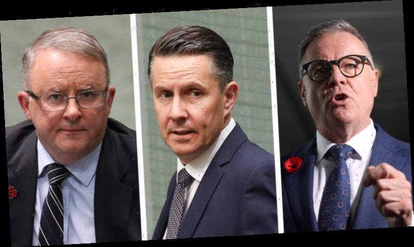 Labor MPs round on Joel Fitzgibbon as climate spat turns nasty