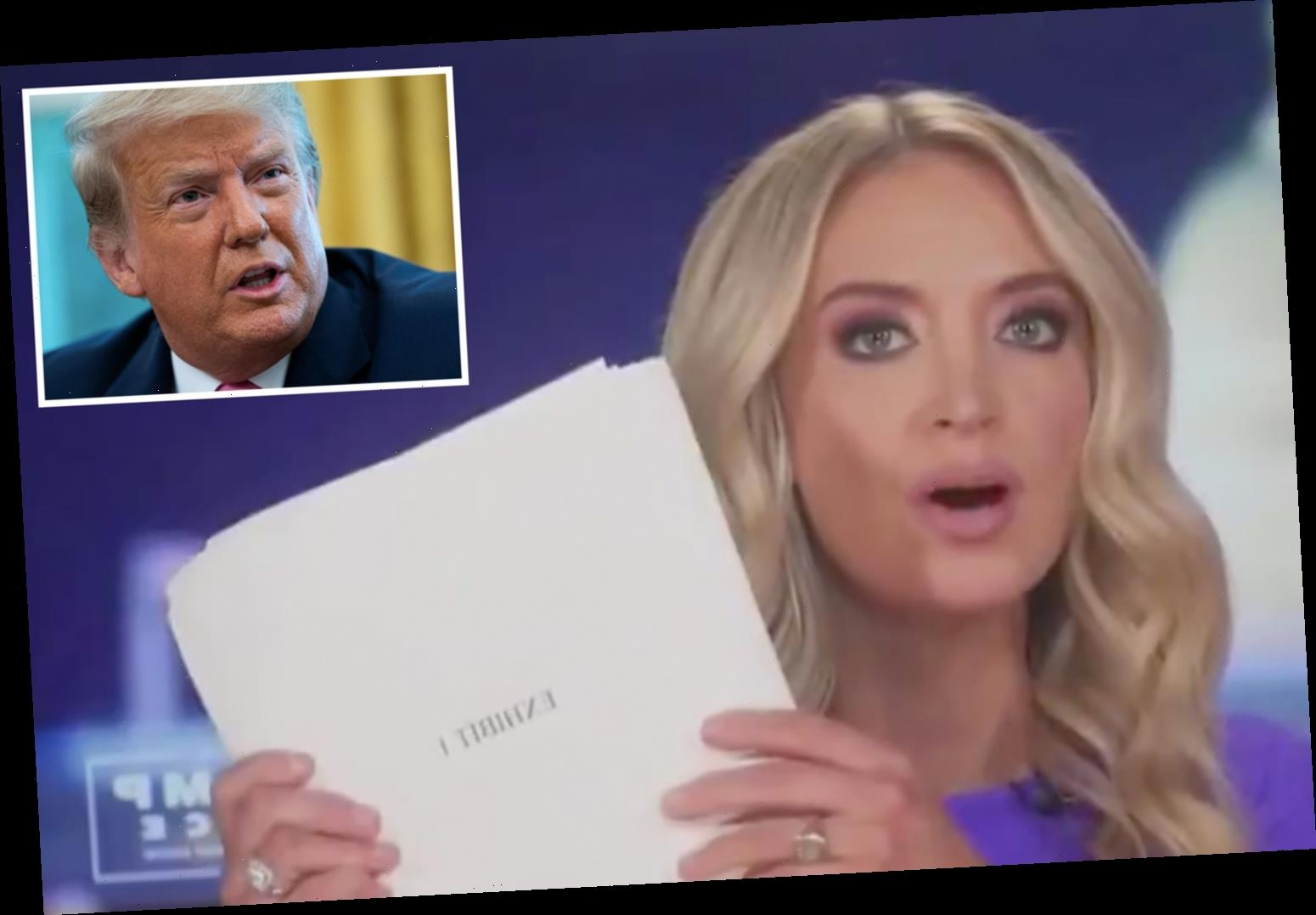 Trump press sec Kayleigh McEnany brandishes '200 PAGES of evidence' of voter fraud after being cut off by Fox News