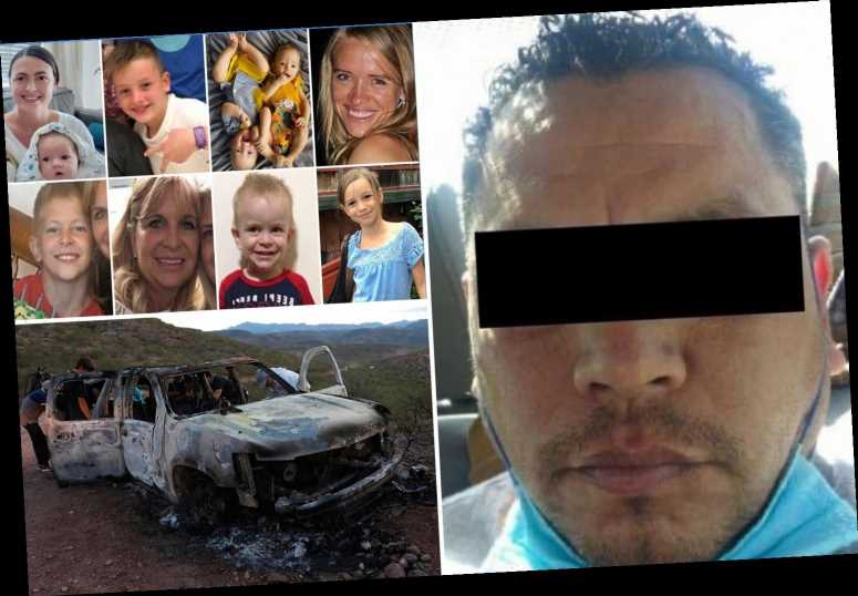 Mexican 'cartel member' arrested for massacre of three US Mormon mums and their six children a year after bloody ambush