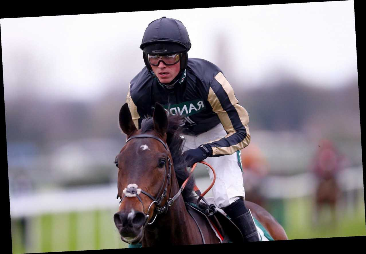 ITV Racing TV tips special: Templegate goes against Paisley Park in the 3pm at Newbury and reveals other top picks
