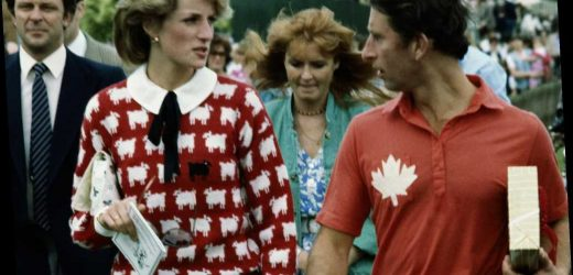 Princess Diana's 'Black Sheep' sweater is back for the first time since 1994