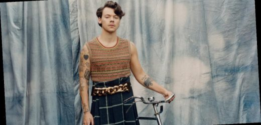 Harry Styles's Vogue Cover Should Be Critiqued, but Not For the Reason the Far-Right Thinks